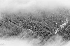 Unspash-Landscapes-111